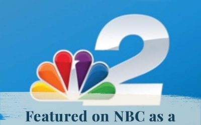 NBC 2: Library Bub Selection: The Artist's Journey